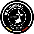 Wasquehal Football